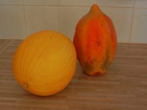 Melone und Papaya